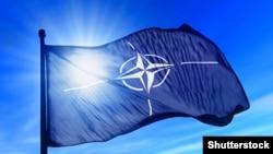 Flamuri i NATO-s ©Shutterstock