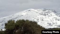 Vrhovi Kilimandžara