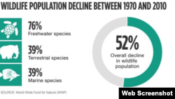 درصد حيات وحش که در فاصله ۱۹۷۰ تا ۲۰۱۰ از بين رفته است