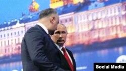 Igor Dodon și Vladimir Putin la St. Petersburg