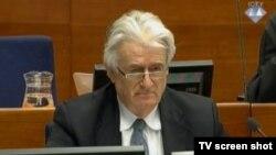 Radovan Karadžić u sudnici 21. ožujka 2013.