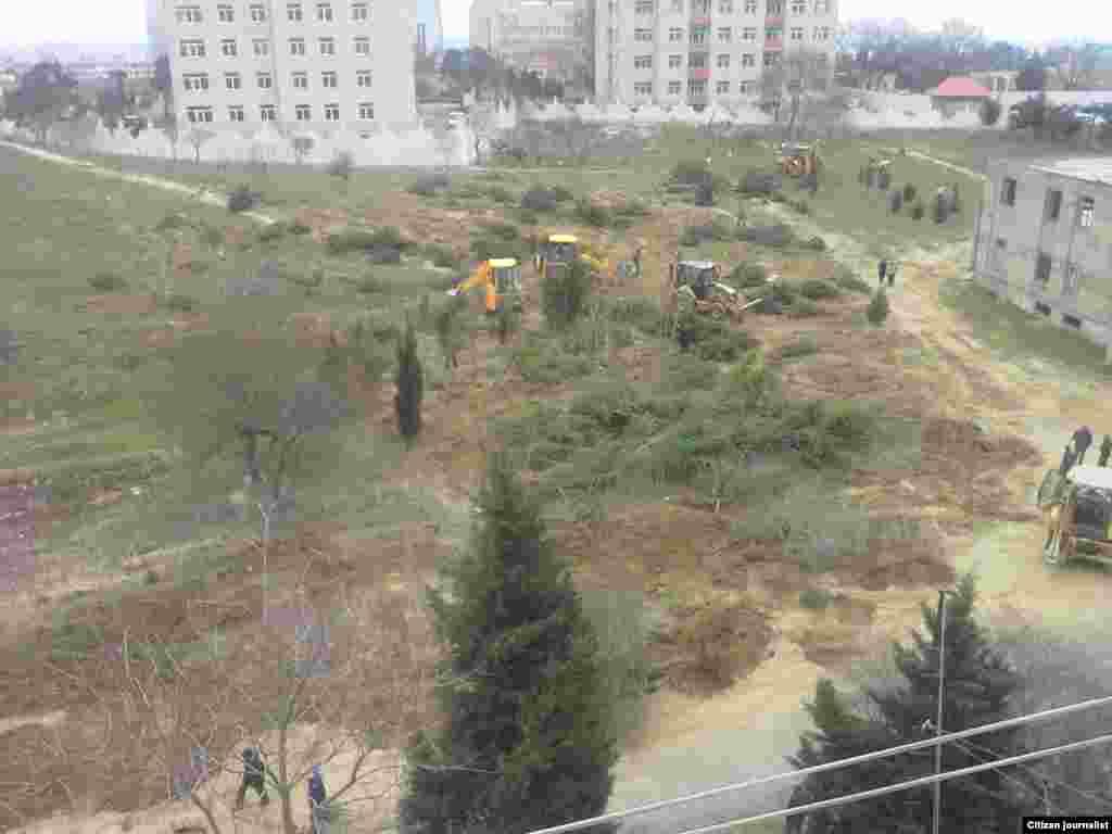 «Botanika Bağı» ərazisində işləyən traktorlar (4 aprel)