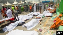 Saudi emergency personnel and Hajj pilgrims stand near bodies covered in sheets at the site where at least 717 were killed and hundreds wounded in a stampede in Mina, near the holy city of Mecca, at the annual hajj in Saudi Arabia.