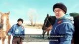 Как русские в кок-бору играют