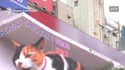 Џиновска 3Д мачка е нова фото-атракција во Токио