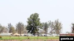 Качкындарга курулган убактылуу лагерь. Термез району, 18-август.