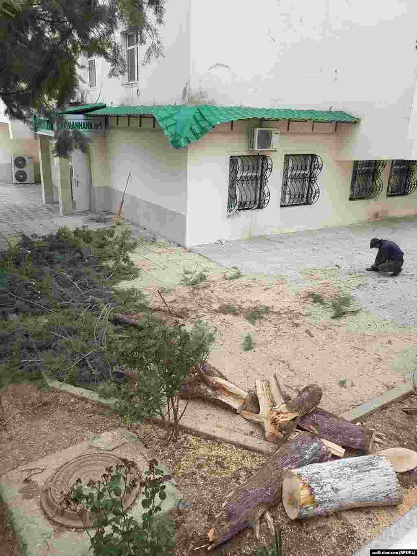 Последствия сильного ветра в ночь на 25 марта. Ашхабад, март 2021 г.