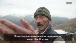 Кукиш Государства Российского. Как выживают фермеры