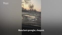 Тошкентлик ҳайдовчига Toshkent City нима учун керак эмас?