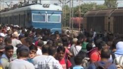 Stotine migranata u Đevđeliji na putu prema Srbiji