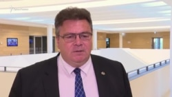 Глава МИД Литвы: Мы должны делать все возможное, чтобы помочь Сенцову (видео)