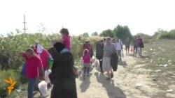 Мигрантите, од Македонија без проблем до Србија