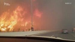 Масштабні лісові пожежі у Греції змушують людей залишати свої домівки – відео