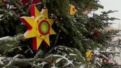 Живая или искусственная: какую елку выбирают киевляне? (видео)