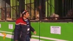 Передвижной зоопарк в Бишкеке