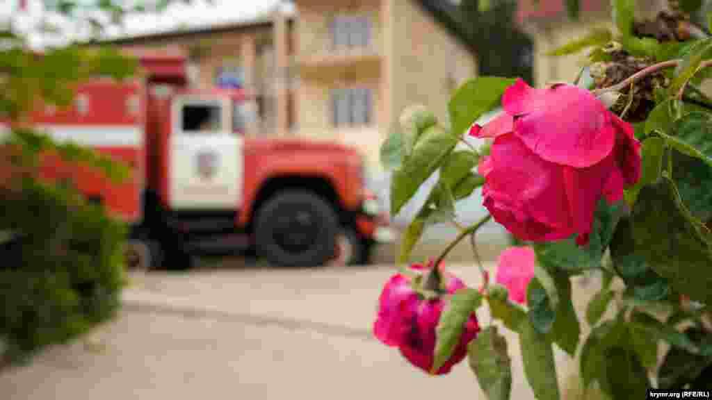 У сільській пожежній частині розквітли троянди