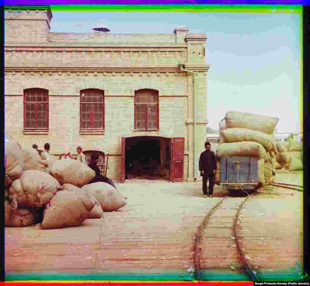 Baloturi de bumbac proaspăt cules sunt livrate la o fabrică de prelucrare din Bayramaly.