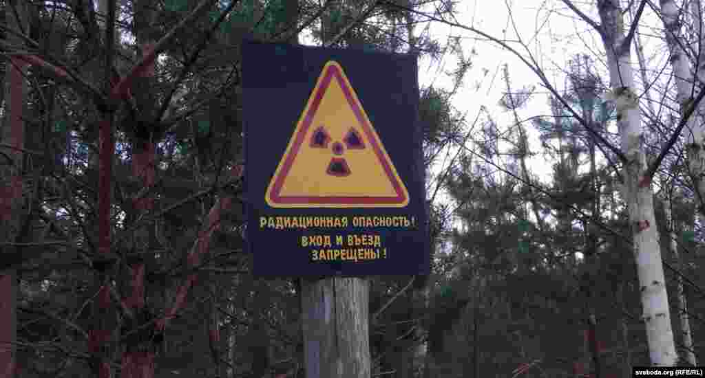 Чернобыль АЭС-індегі апаттан Еуропаның оннан аса мемлекетінің 145 мың шаршы шақырым жері радиоактивті заттармен ластанып, миллиондаған халық зардап шекті. Суретте: Могилев аймағы, Беларусь. 24 сәуір 2013 жыл.