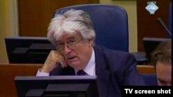 radovan Karadžić u sudnici, arhiva