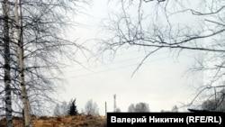 """""""Китайская лесопилка"""" в Томской области."""
