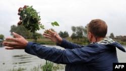Ер азамат Ярославль маңайындағы ұшақ апаты болған жерге гүл тастап жатыр. 9 қыркүйек 2011 жыл.