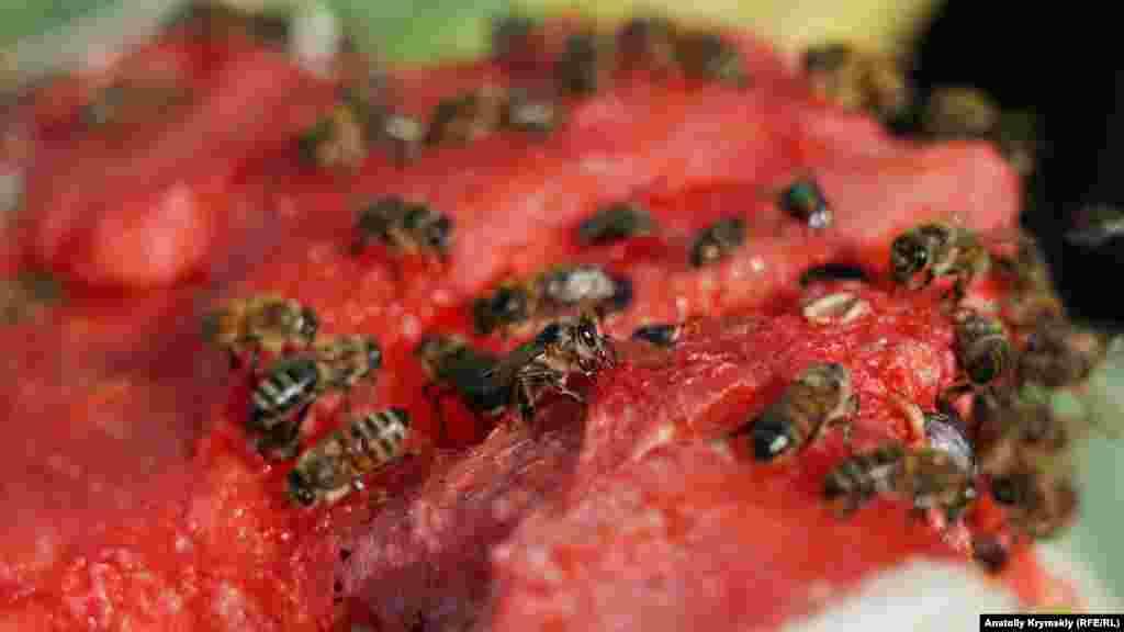 Бджолам припав до смаку соковитий кавун на прилавку