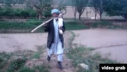 Гулам Сахи идет к высаженным им деревьям.