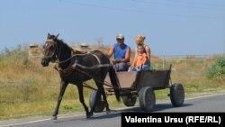 Кантемир, Молдова