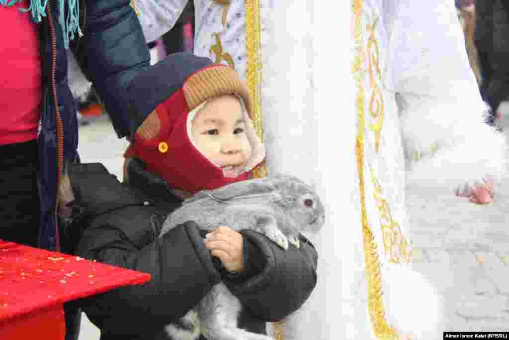 Кажется ему больше всего нравится кролик!