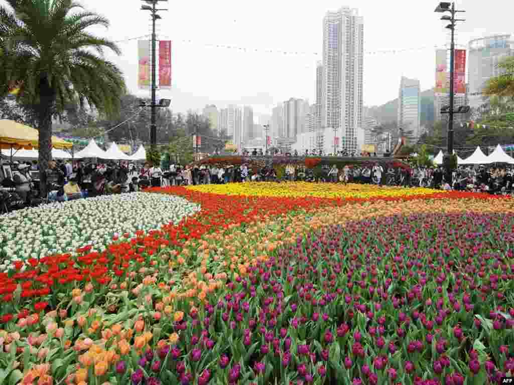 В Гонконге открылась выставка цветов