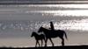 Житель Забайкалья устроил пожар, в котором погибли 60 лошадей