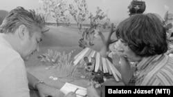 Foky Ottó rendező (b) és Cakó Ferenc animátor megbeszélnek egy jelenetet a Pannónia Filmstúdió bábműtermében, ahol 13 részes bábfilmet forgatnak A legkisebb ugrifüles címmel
