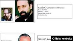 Preostali haški begunci Goran Hadžić i Ratko Mladić