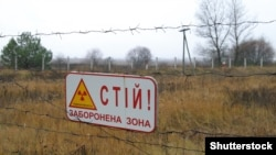 За ці роки територія Чорнобильської зони відчуження стала великою екологічною нішею