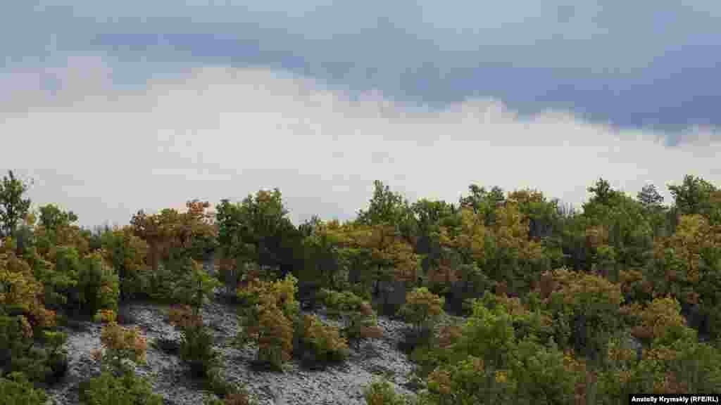 З гір на селище насуваються дощові хмари