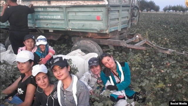 Young Uzbek women take a break from picking cotton.