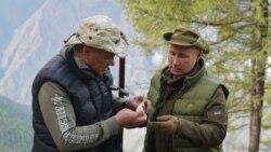 Цитаты Свободы. Синица в тюрьме и Путин в тайге
