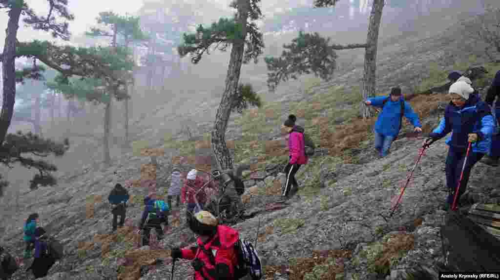 Гірські схили після дощу стали дуже слизькими