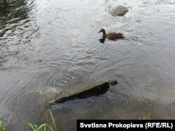 Найденное в реке гранитное надгробие