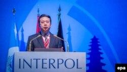 Новиот претседател на Интерпол Менг Хонгвеј се обраќа на годишното собрание одржано во Бали, Индонезија на 10 ноември 2016