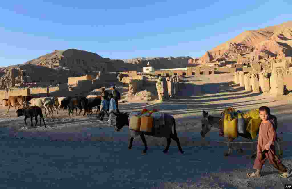 Hazara tribespeople walk with their animals in Bamiyan.