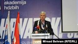 Prijedlog Izbornog zakona za narode, ne građane: Dragan Čović