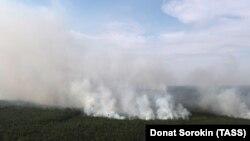 Лісова пожежа в Красноярському краї, Росія, серпень 2019 року