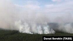 Лесные пожары в Красноярском крае, август 2019 года