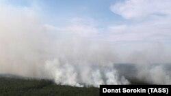 Лесной пожар в Красноярском крае. Лето 2019 года