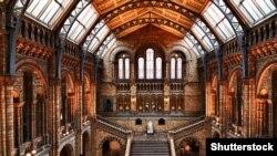 Բնագիտության պատմության թանգարանի սրահներից մեկը