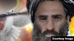 """""""Талибанның"""" бұрынғы басшысы Молла Омар."""