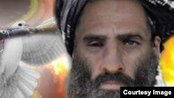 """""""талибан"""" жетекшісі Мулла Мохаммад Омар."""