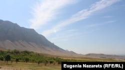 Кыргызстан-Өзбекстан чек арасы.
