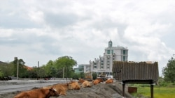 Строительный бум в этих местах начался после августовской войны 2008 года